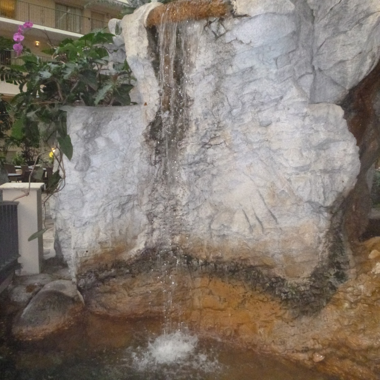 Embassy Suites -Waterfall - Ft Lauderdale